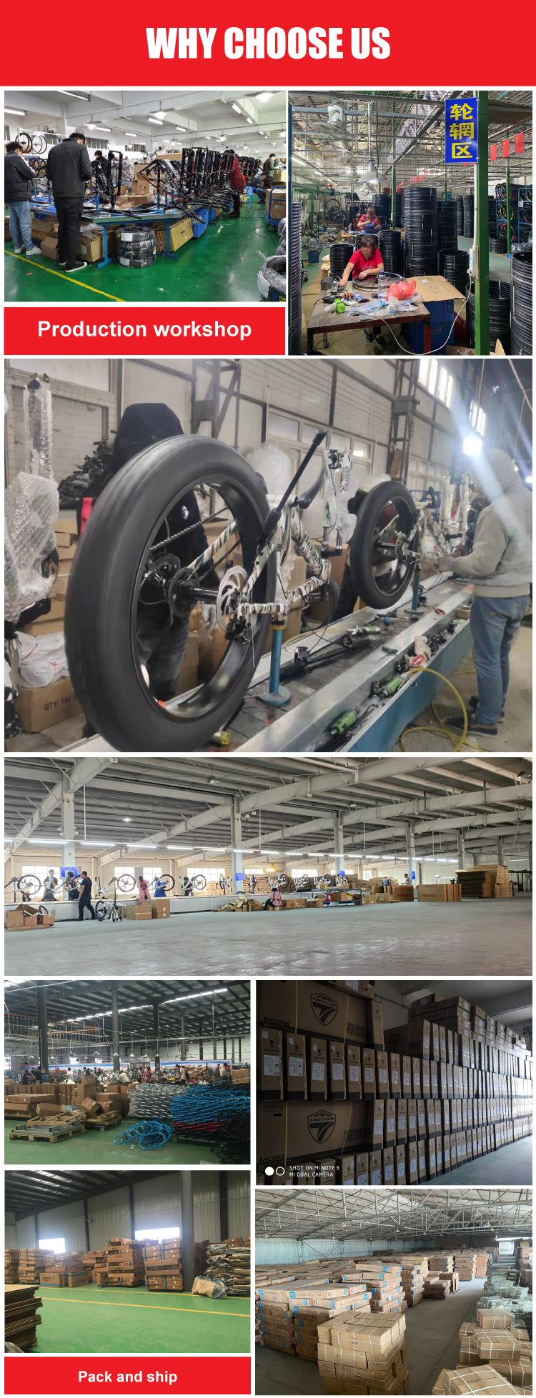 自行车公司实力2.jpg